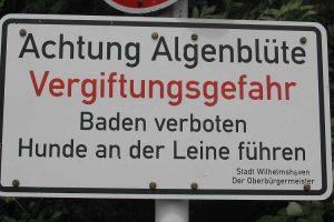 Warnschild vor Algen